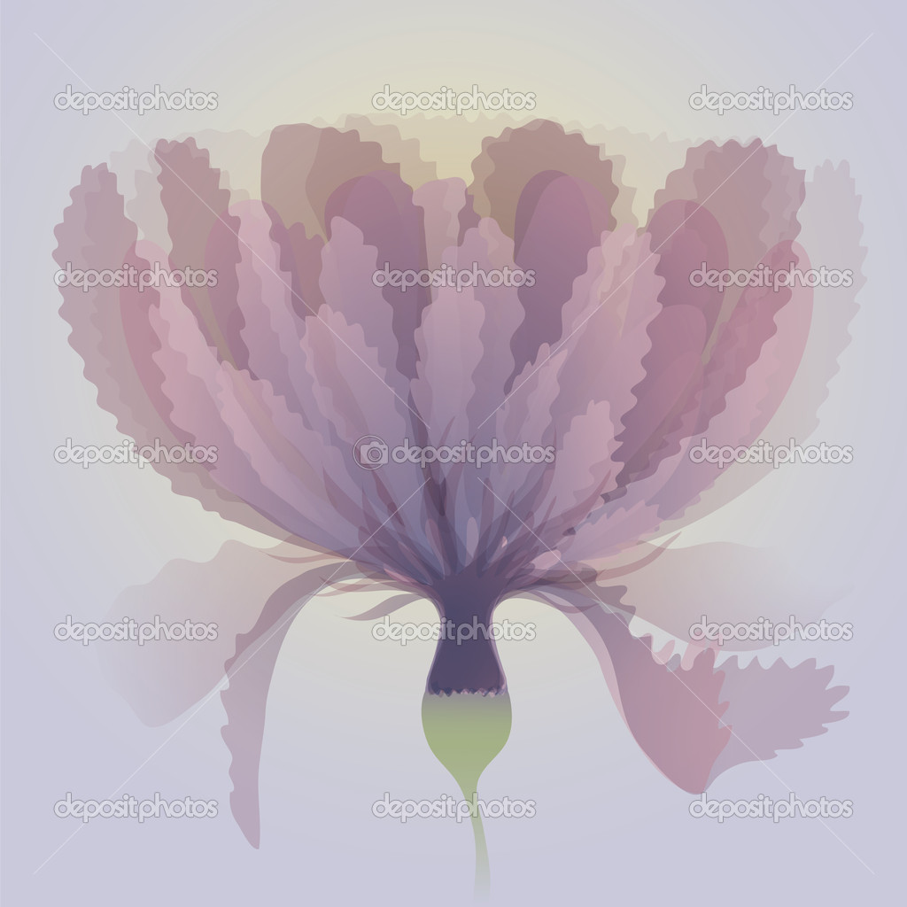 Abstract mauve flower
