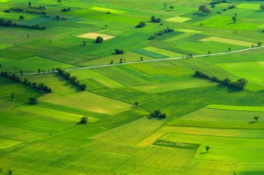 Big green meadow. stock vector