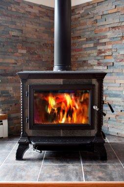 Burning Cast Iron Wood Stove Heating