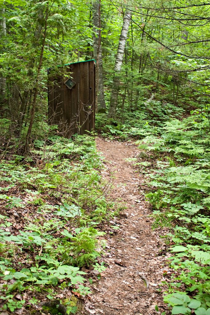 Old Outhouse in the Woods