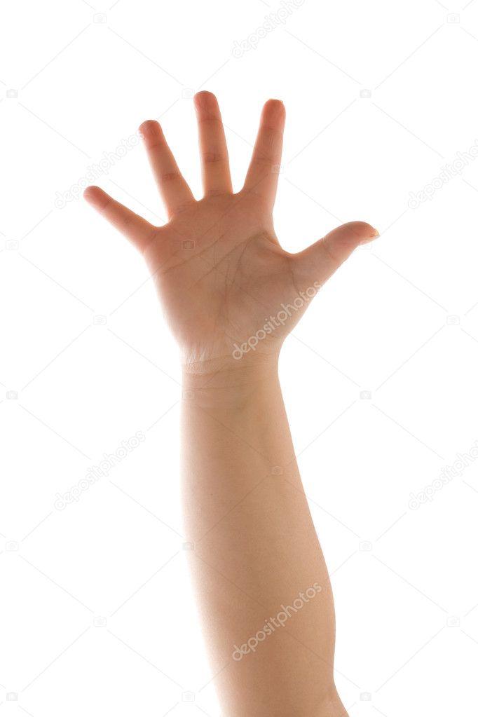 Waving Hand Isolated