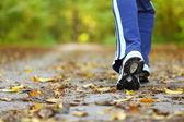 žena pěšky přes země stezka v podzimním lese