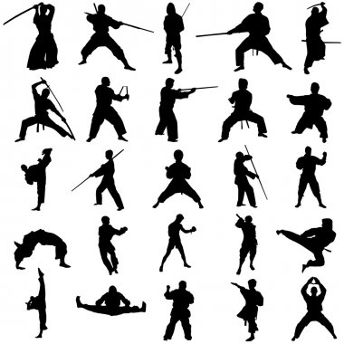 Set of fighter