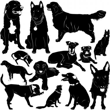 Dog vector with details