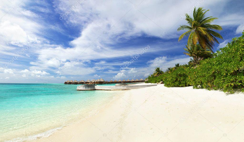 Extreme paradise
