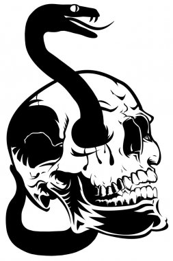 Skull with Snake Clip Art