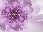 Smooth violet flower, fractal graphic