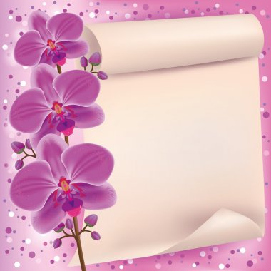 Invitation or greeting card with purple orchid