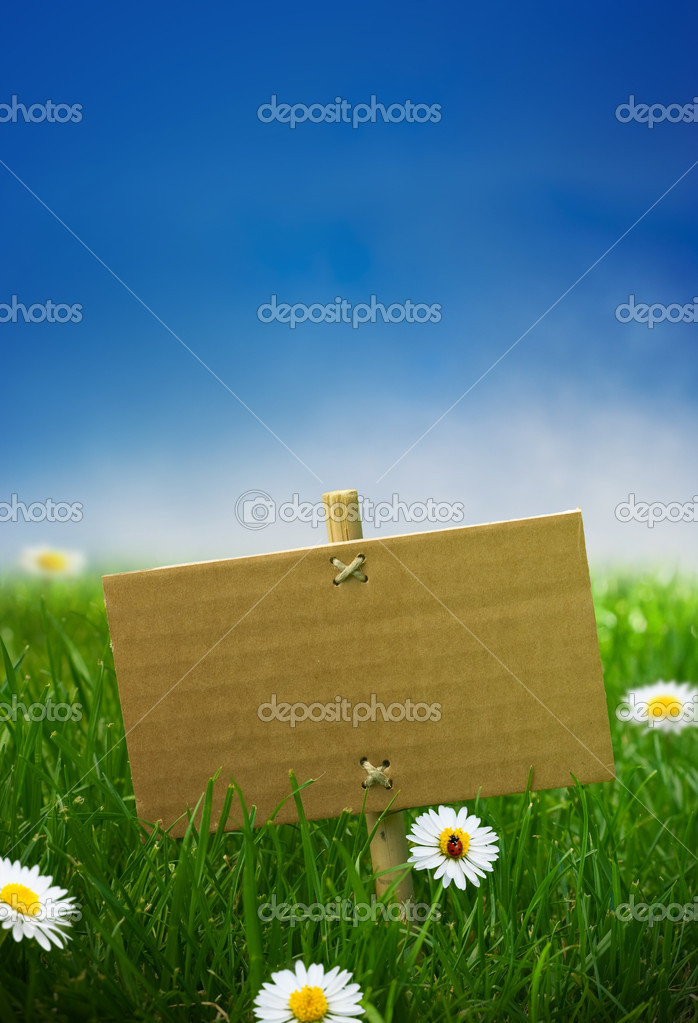 Blank green sign, garden grass, banner in nature, blue sky