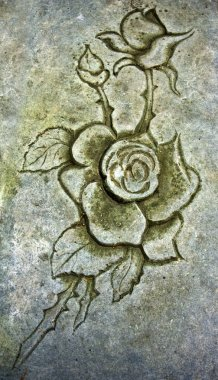 Old engraver rose in stone