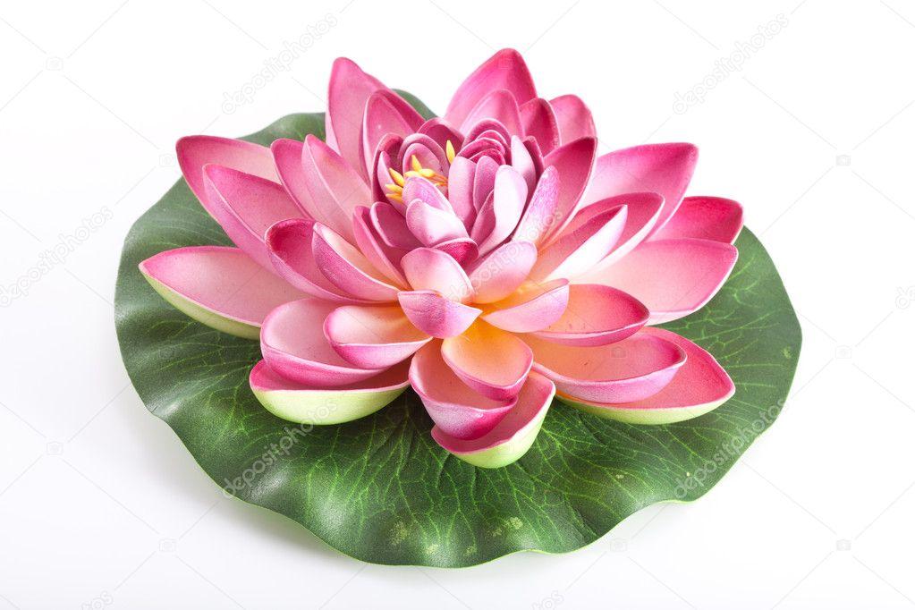 Flores De Plástico De Una Flor De Loto Fotos De Stock Moscowbear