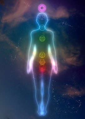 Human system of chakras
