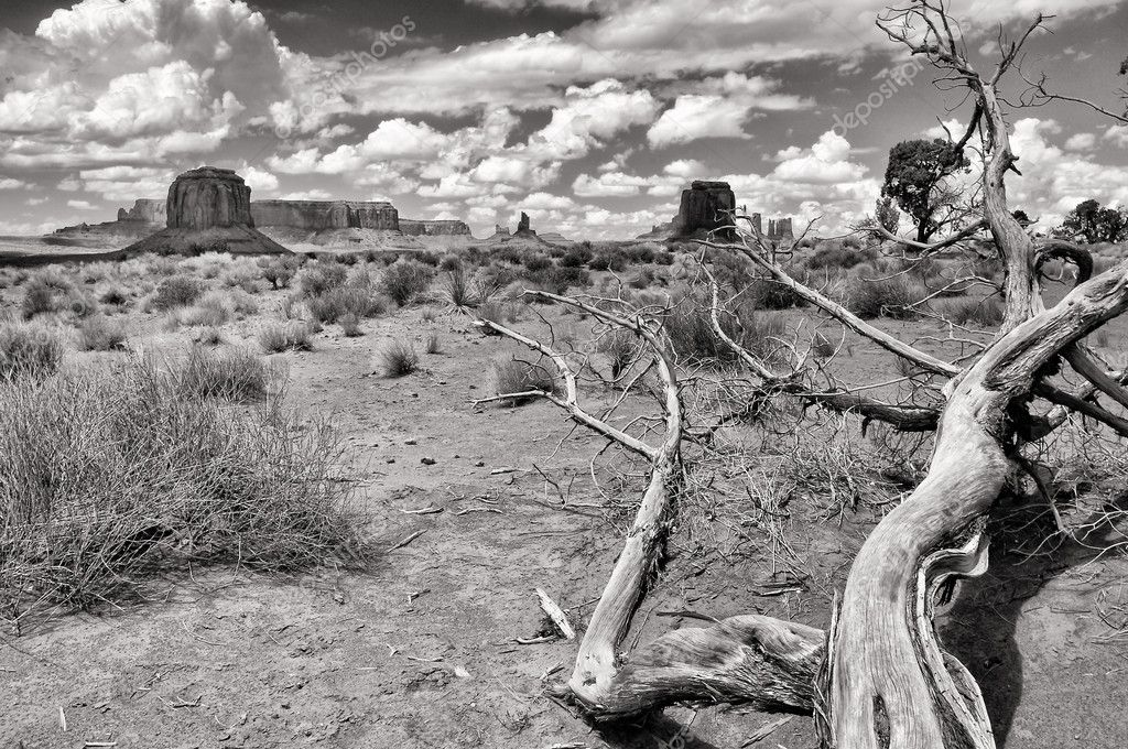 Monument valley black and white landscape view