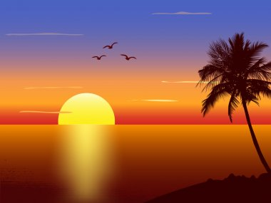 Sunset with palmtree silhouette stock vector