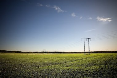 Electricity pylon on field