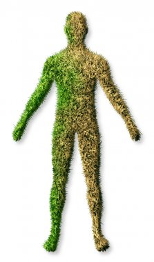 Human Body Disease