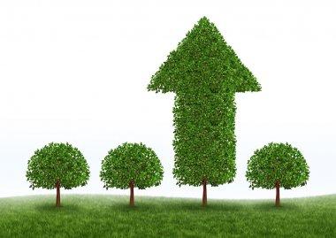 Financial Growth Success