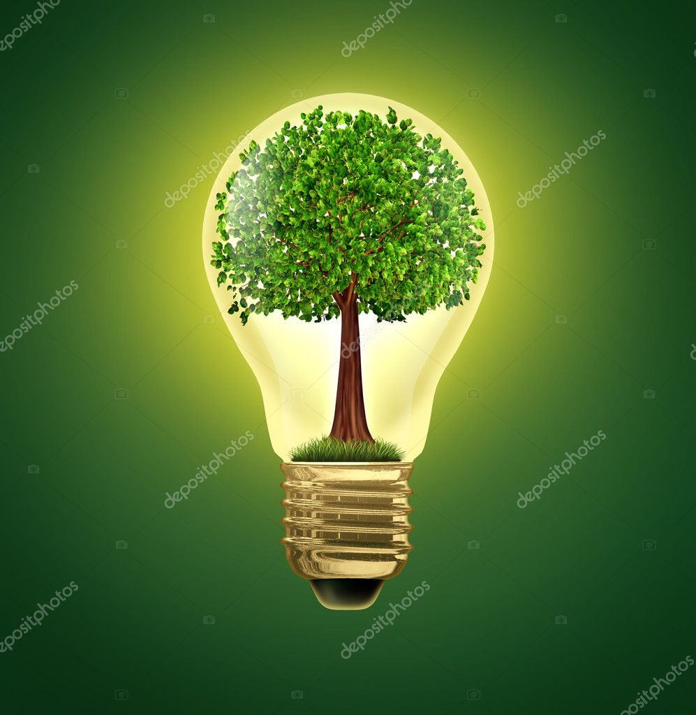 Environmental Ideas