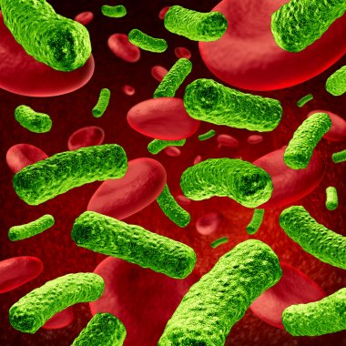 Bacteria Blood Infection