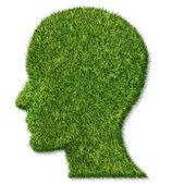 zdraví a paměti funkce mozku