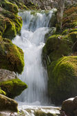 cascata a plitvicka jezera - plitvice