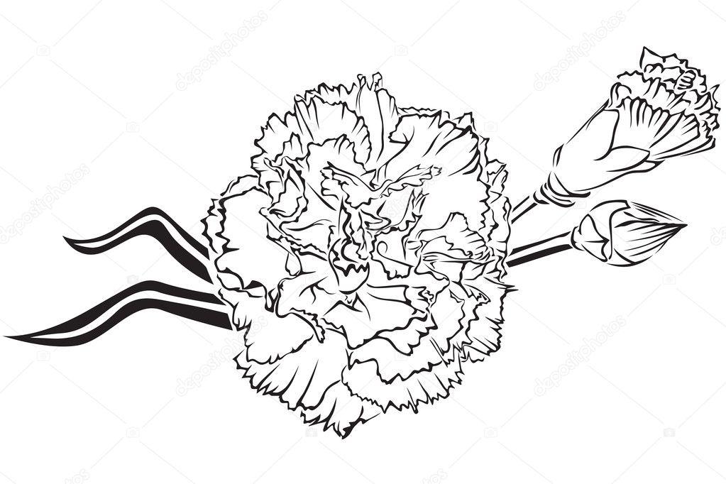Гвоздика и георгиевская лента рисунок карандашом