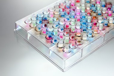 Microplate in colors