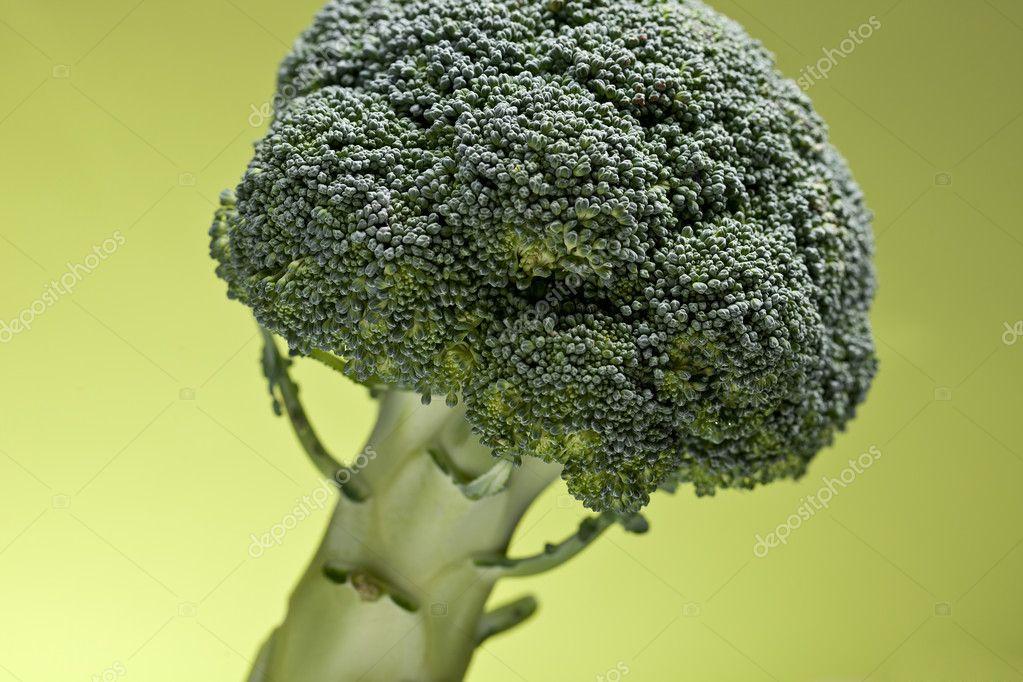 Brokkoli gemüse kochen essen pflanze gesund grün