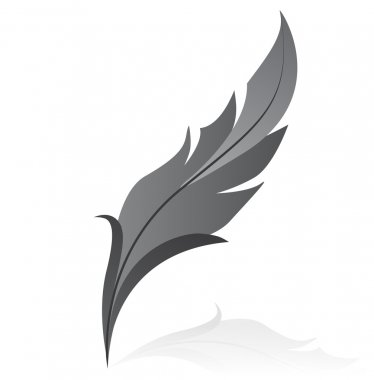 Vectorillustration of grey feather
