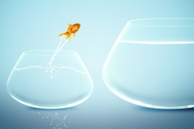 Goldfish in small fishbowl watching goldfish jump into large fis