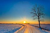 Fotografie Sonnenuntergang in eine weiße Winterlandschaft
