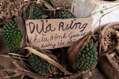 Selling green fruits in Vietnam
