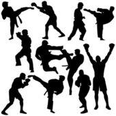 Fényképek Sziluettjét Martial Arts