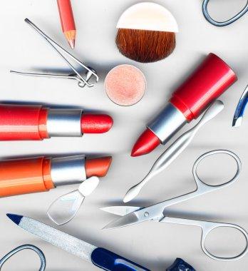 Makeup brush and cosmetics