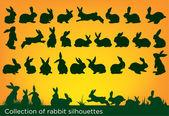 Kaninchensilhouetten