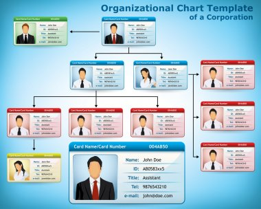 Company Structure Diagram with personalized cards for employees stock vector