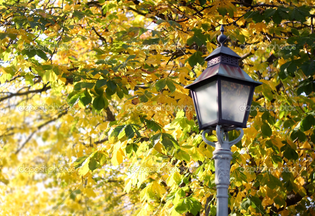 Autumn Lamp Post