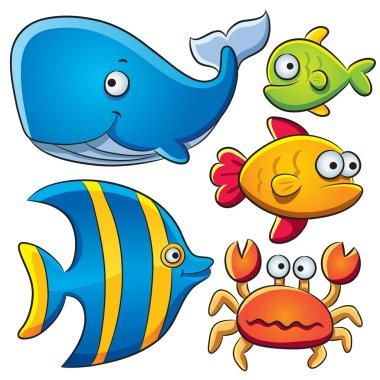 Sea Fish Collection