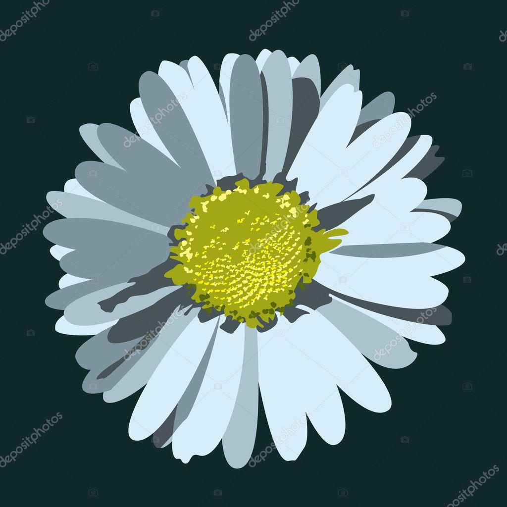 Daisy Flower Illustratie Vector Achtergrond Stockvector Zoyaart