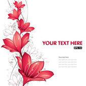 Fotografie design červené lilie