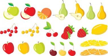 Fruits. Set.