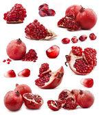 Fotografie kolekce červená granátové jablko ovoce