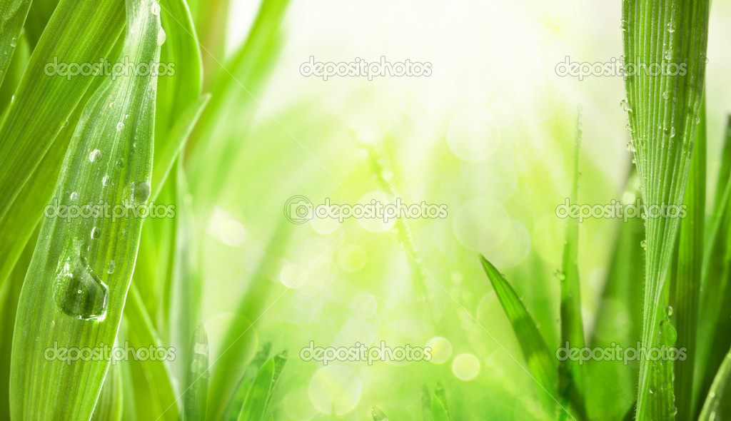 Rays of the sun, water drops background