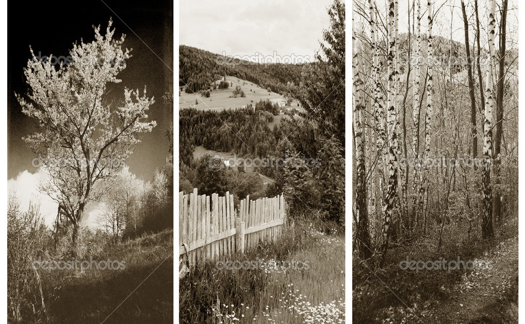 Old traditional photography - Rural views, triptych