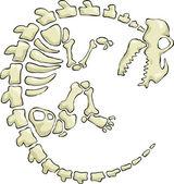 Fotografie Dinosaurier-Skelett