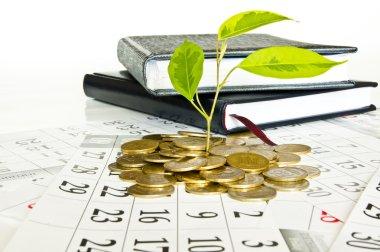 Coin money tree