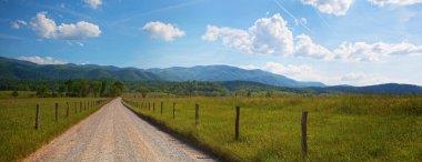Tennessee Panorama
