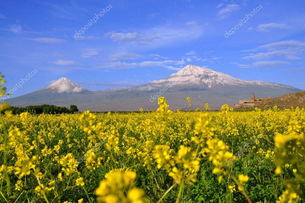 Large and small Ararat in Armenia