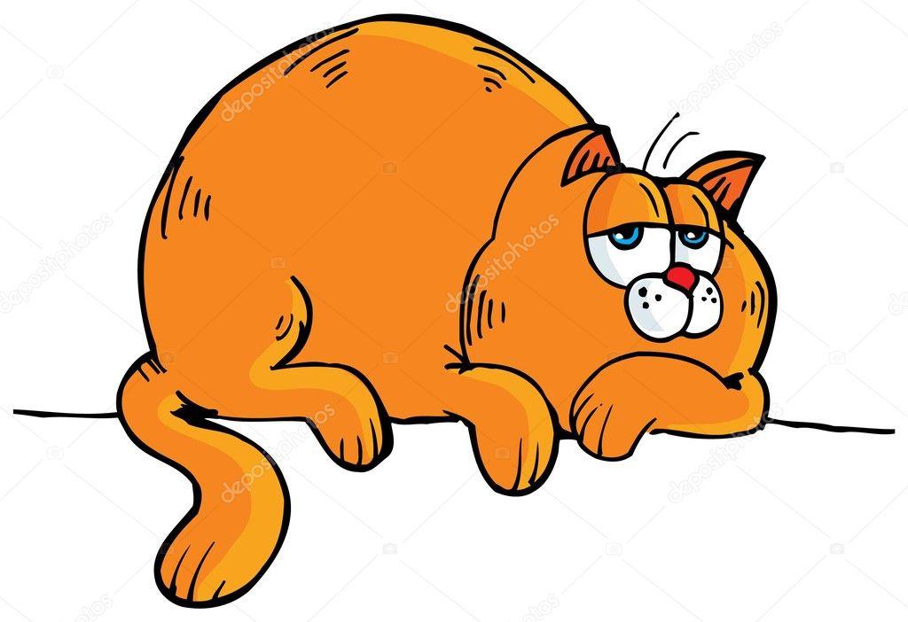 картинка толстая кошка сидит на коврике этому музею