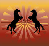 Silhouette of horses - vector